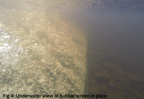 underwater view of bubble screens