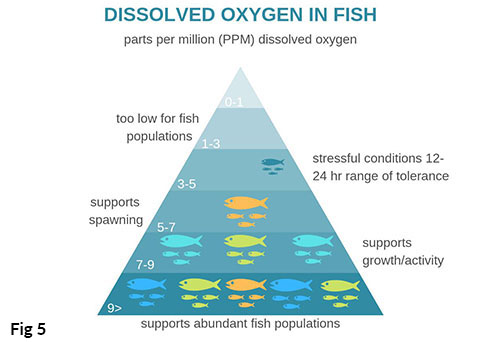 chart showing fish tolerance of dissolved oxygen