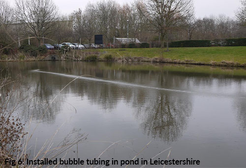 installed bubble tubing in pond