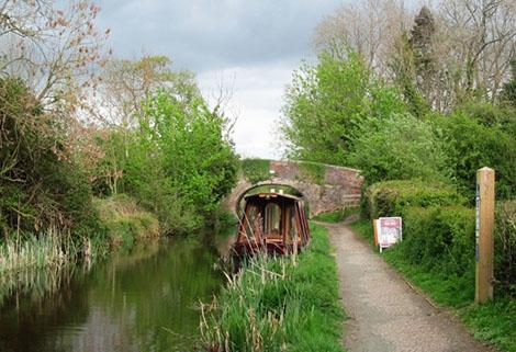 maesbury marsh, montgomery canal