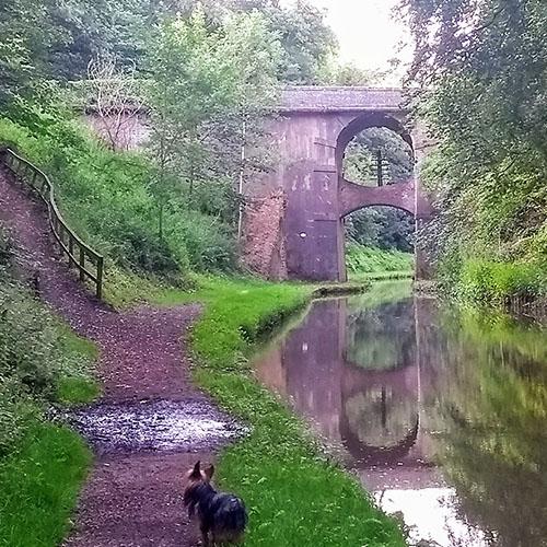 Shropshire Union Canal Telegraph pole bridge