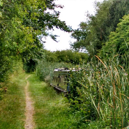 overgrown canal on Leicester Branch of Grand Union