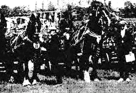 West Bromwich Horse Show 1927